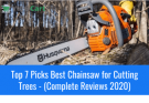 Best Chainsaw for Cutting Trees