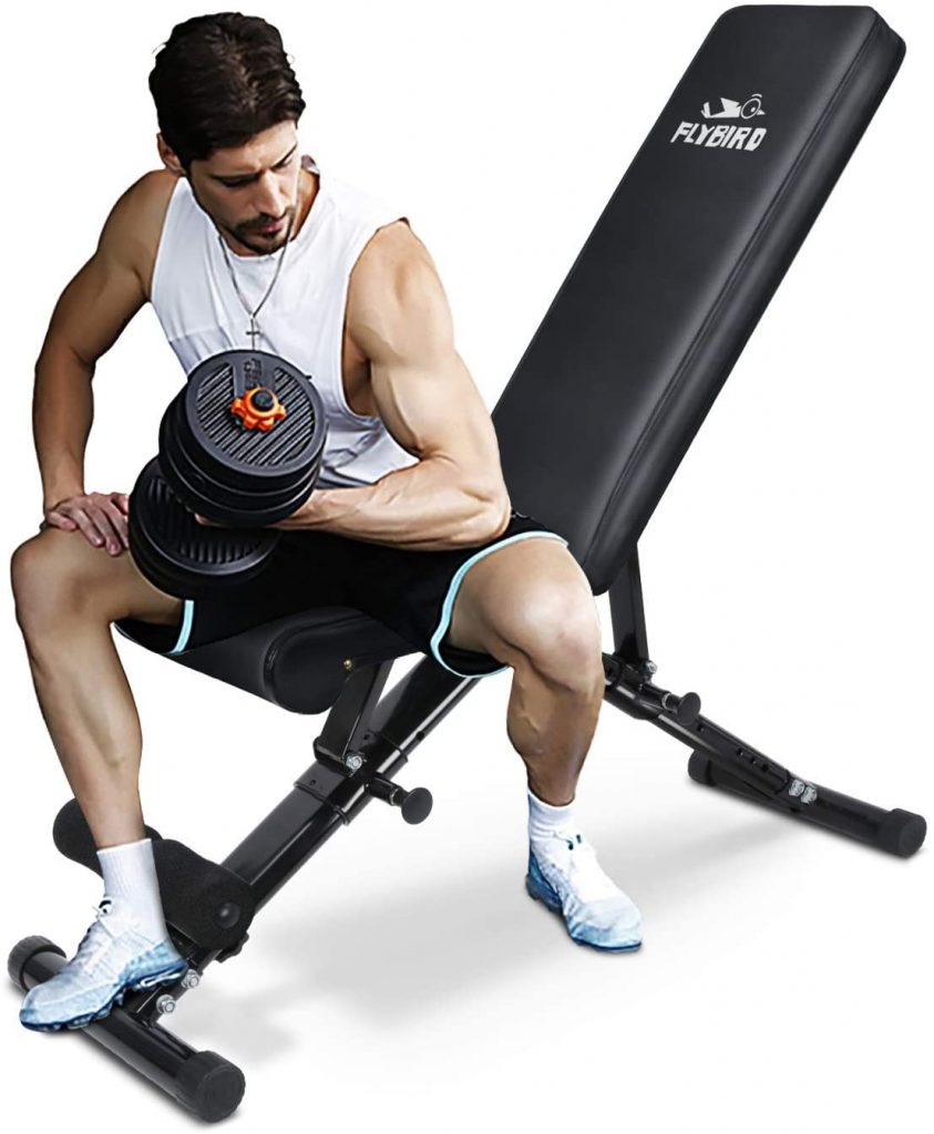 This image has an empty alt attribute; its file name is FLYBIRD-Weight-Bench-843x1024.jpg