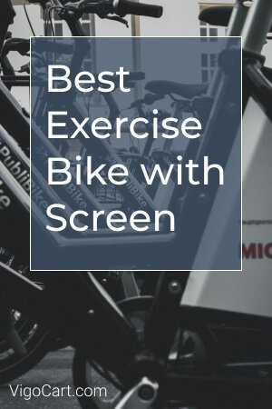 Best Exercise Bike with Screen