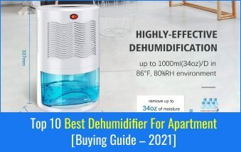 Best Dehumidifier For Apartment
