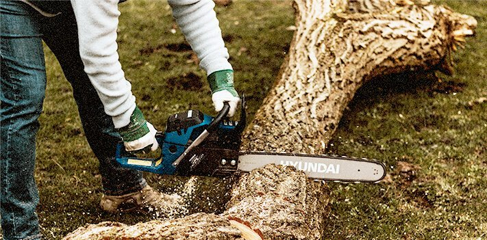 8 Picks Best Chainsaw For Cutting Trees [Reviews] 1