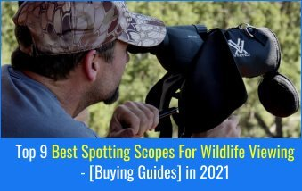 Scopes For Wildlife Viewing